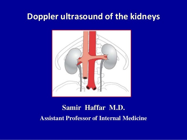 Doppler ultrasound of the kidneys Samir Haffar M.D. Assistant Professor of Internal Medicine
