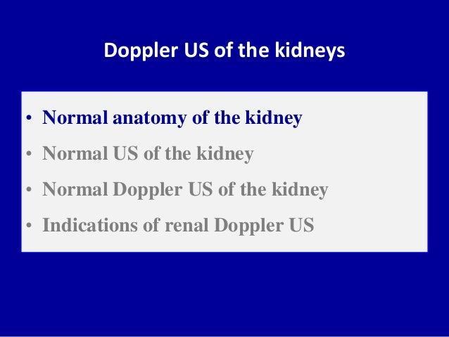 Doppler ultrasound of the kidneys Slide 2