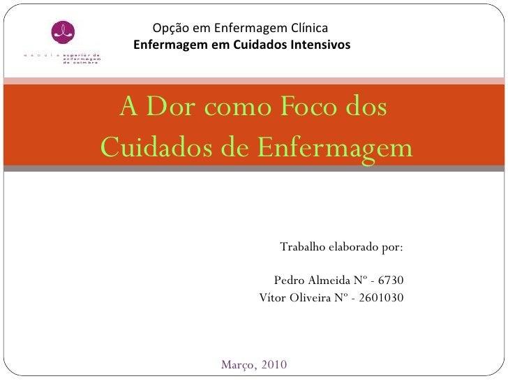 A Dor como Foco dos  Cuidados de Enfermagem ESCOLA  SUPERIOR  DE  ENFERMAGEM  DE  COIMBRA Março, 2010 Opção em Enfermagem ...