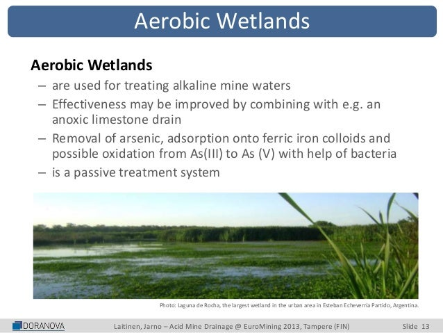 acid mine drainage treatment pdf
