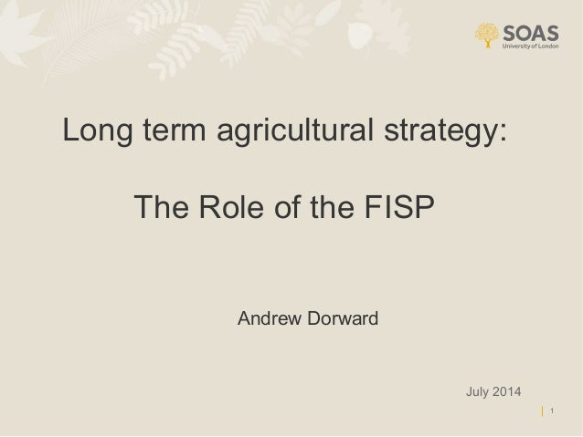 1 Long term agricultural strategy: The Role of the FISP July 2014 Andrew Dorward