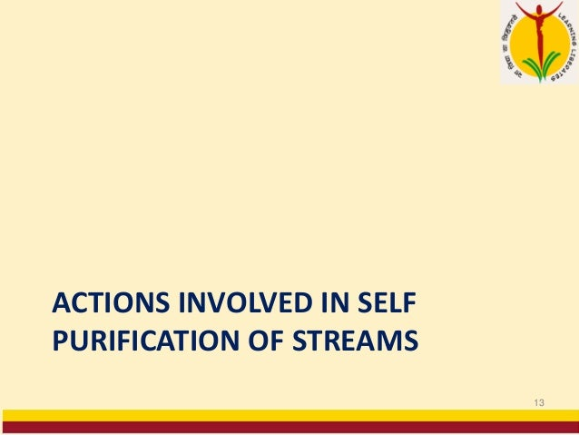ACTIONS INVOLVED IN SELF PURIFICATION OF STREAMS 13