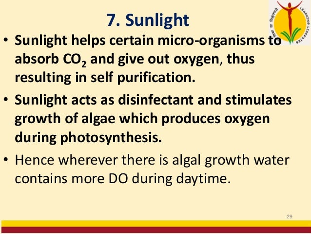 7. Sunlight • Sunlight helps certain micro-organisms to absorb CO2 and give out oxygen, thus resulting in self purificatio...