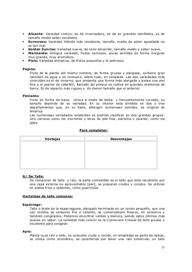 37 • Alicante: Variedad común, es de invernadero, se da en grandes ramilletes, es de tamaño medio sabor excelente. • Euroc...