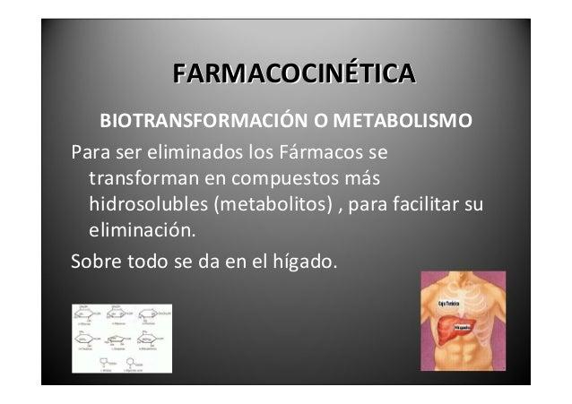 BIOTRANSFORMACIÓNO            METABOLISMO.Lasreaccionesdebiotransformación  – Oxidación  – Reducción  – Hidrólisis  ...