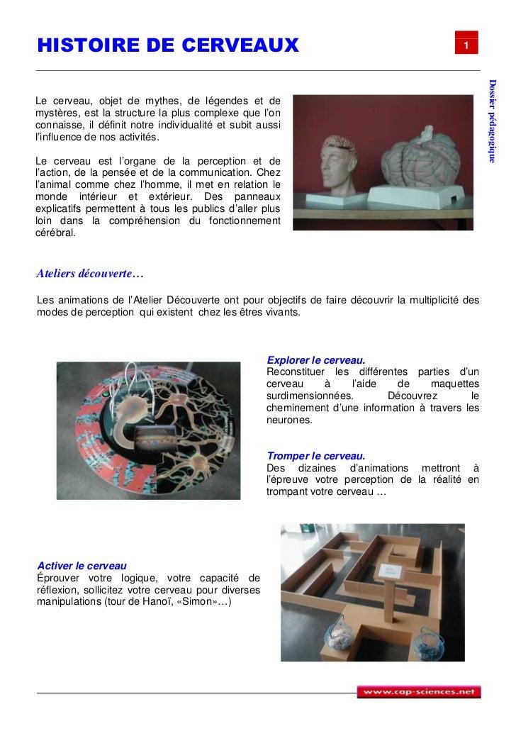 HISTOIRE DE CERVEAUX                                                                        1                             ...