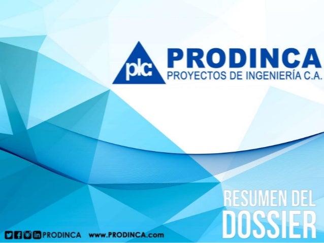 El contenido de este documento expresa de manera breve la descripción de nuestra empresa Proyectos de Ingeniería C.A. y la...