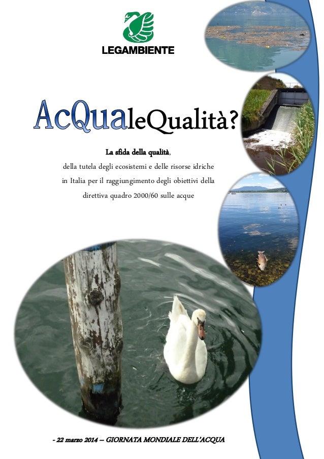 La sfida della qualità, della tutela degli ecosistemi e delle risorse idriche in Italia per il raggiungimento degli obiett...