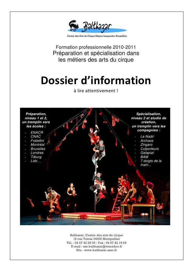 Formation professionnelle 2010-2011                   Préparation et spécialisation dans                     les métiers d...