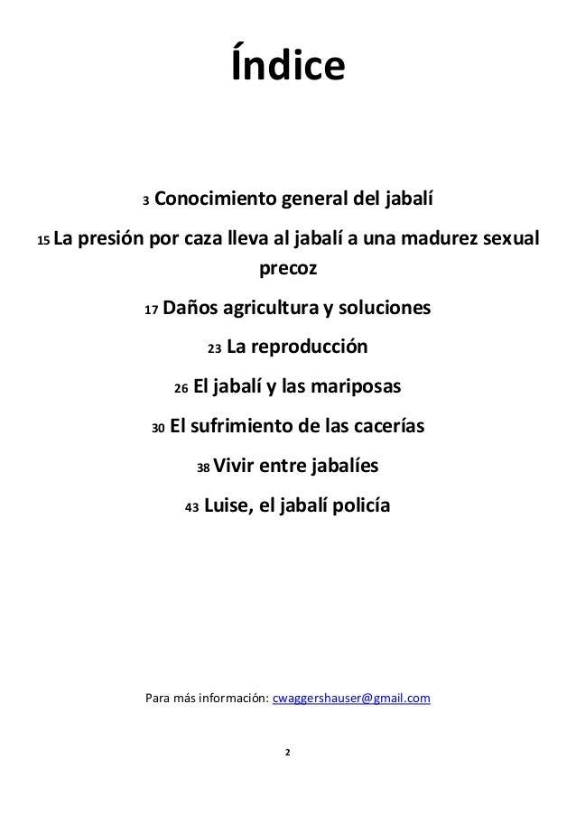Dossier   el jabali Slide 3