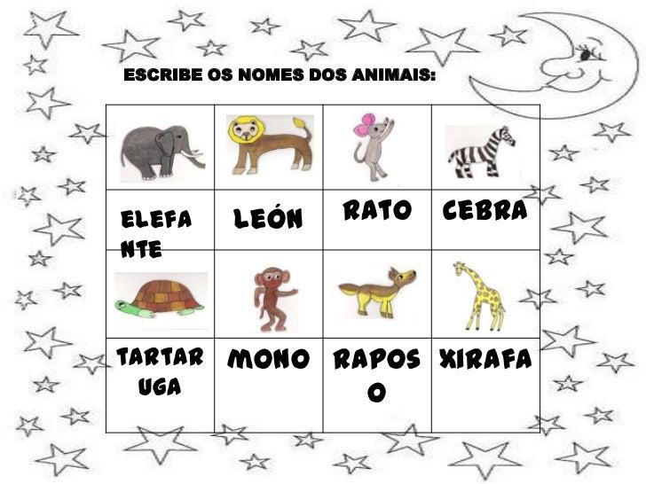 DECORA A LÚA: