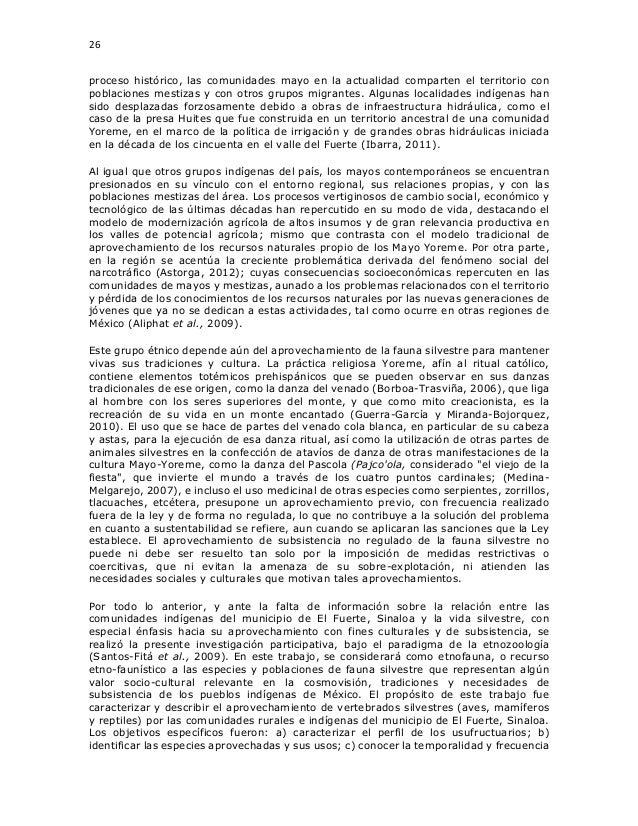 26 proceso histórico, las comunidades mayo en la actualidad comparten el territorio con poblaciones mestizas y con otros g...