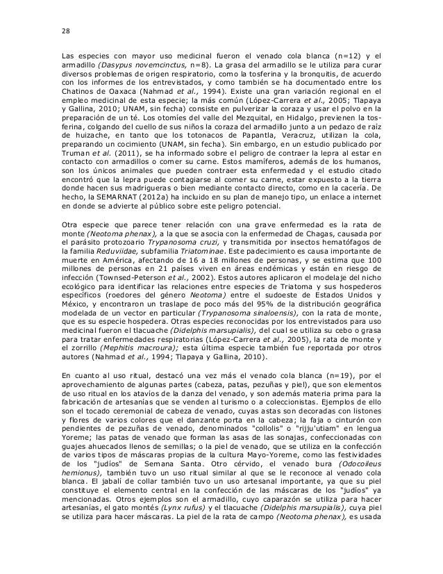 28 Las especies con mayor uso medicinal fueron el venado cola blanca (n=12) y el armadillo (Dasypus novemcinctus, n=8). La...