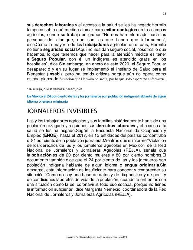 29 Dossier Pueblos indígenas ante la pandemia Covid19 sus derechos laborales y el acceso a la salud se les ha negadoHermil...