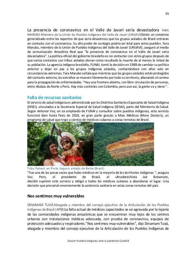35 Dossier Pueblos indígenas ante la pandemia Covid19 La presencia de coronavirus en el Valle de Javari sería devastadora ...