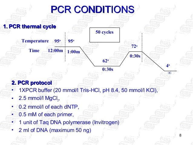 nested pcr detecting gmo