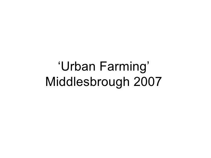 ' Urban Farming' Middlesbrough 2007