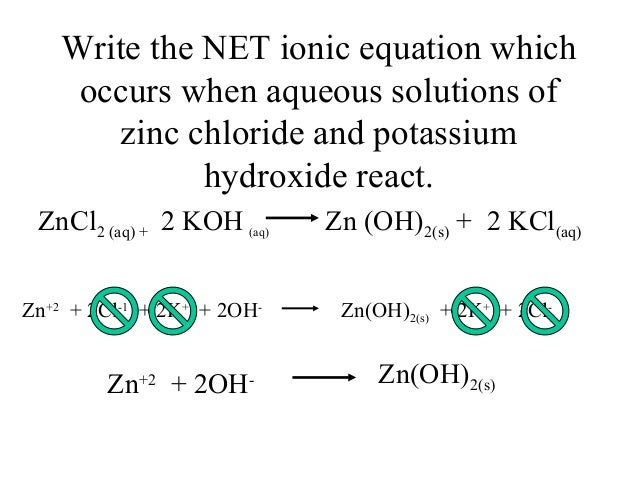 Net Ionic Equation Calculator