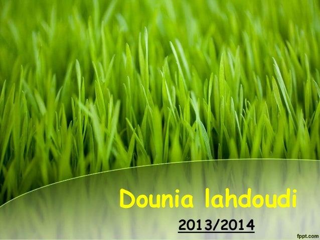 Dounia lahdoudi 2013/2014