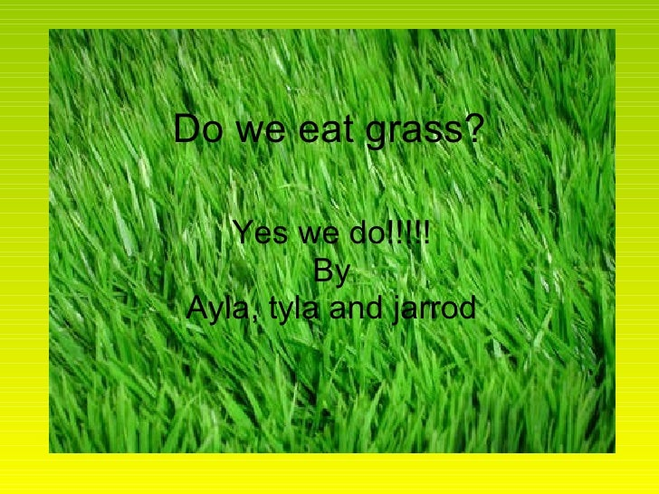 Do we eat grass? Yes we do!!!!! By Ayla, tyla and jarrod