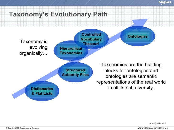 Taxonomy's Evolutionary Path © 2007, Dow Jones Dictionaries & Flat Lists Hierarchical Taxonomies Controlled Vocabulary The...