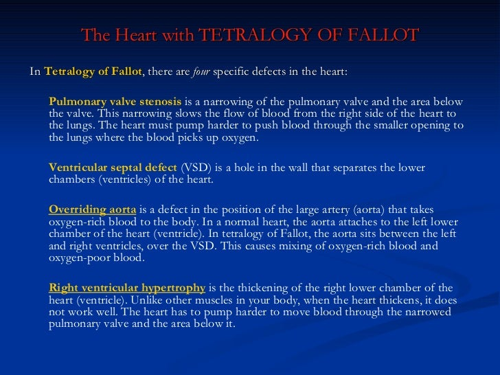 The Heart with TETRALOGY OF FALLOT <ul><li>In  Tetralogy of Fallot , there are  four  specific defects in the heart: </li>...