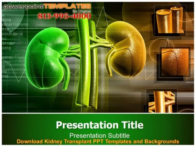 Download kidney transplant ppt templates and backgrounds toneelgroepblik Images