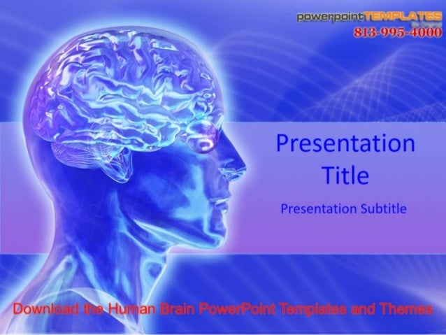 The Human Brain Powerpoint Templates And Themes
