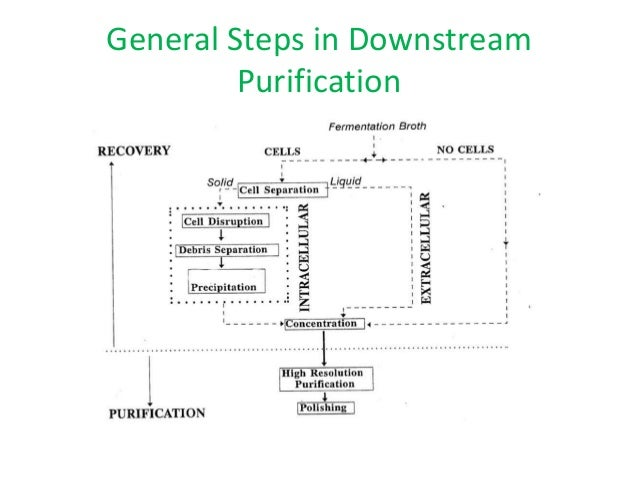 downstream processing diagram