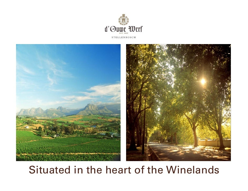 Situated in the heart of the Winelands
