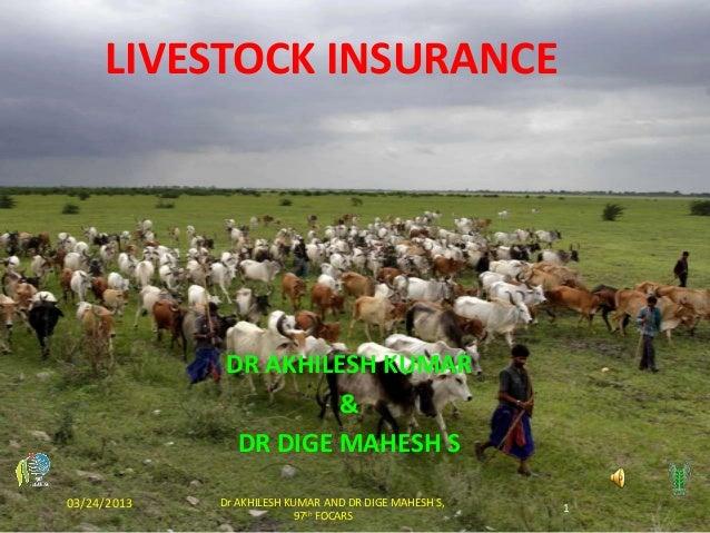 LIVESTOCK INSURANCE              DR AKHILESH KUMAR                       &               DR DIGE MAHESH S03/24/2013   Dr A...