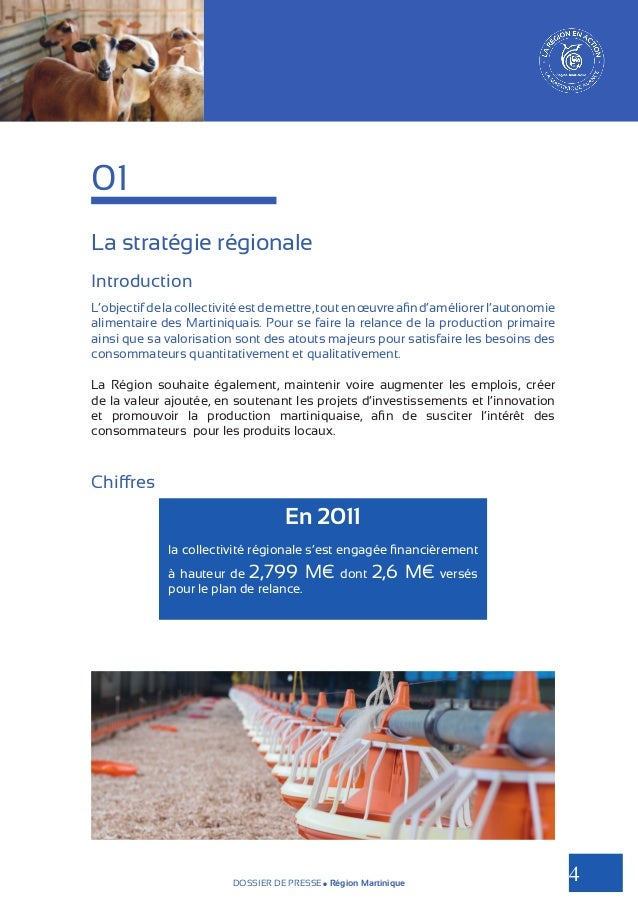01 La stratégie régionale Introduction L'objectif de la collectivité est de mettre, tout en œuvre afin d'améliorer l'auton...