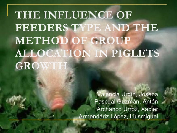 THE INFLUENCE OF FEEDERS TYPE AND THE METHOD OF GROUP ALLOCATION IN PIGLETS GROWTH Valencia Urdín, Joseba Pascual Guzmán, ...