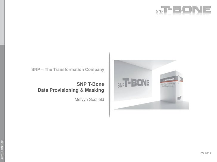 SNP – The Transformation Company                                  SNP T-Bone                  Data Provisioning & Masking ...
