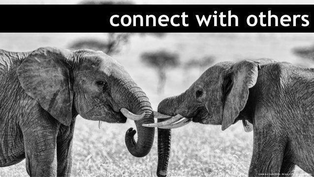 connect with others Creative Commons: https://flic.kr/p/sfbUUm