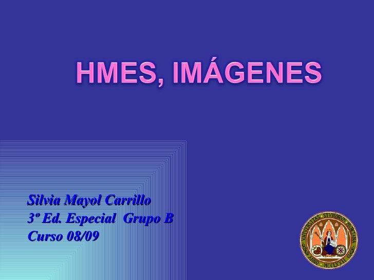 <ul><li>Silvia Mayol Carrillo  </li></ul><ul><li>3º Ed. Especial  Grupo B  </li></ul><ul><li>Curso 08/09 </li></ul>