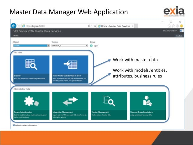 Master Data Manager Web Application Work with master data Work with models, entities, attributes, business rules