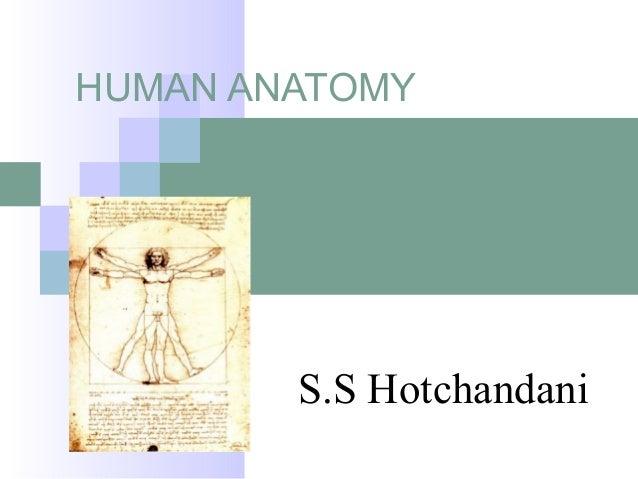 HUMAN ANATOMY S.S Hotchandani