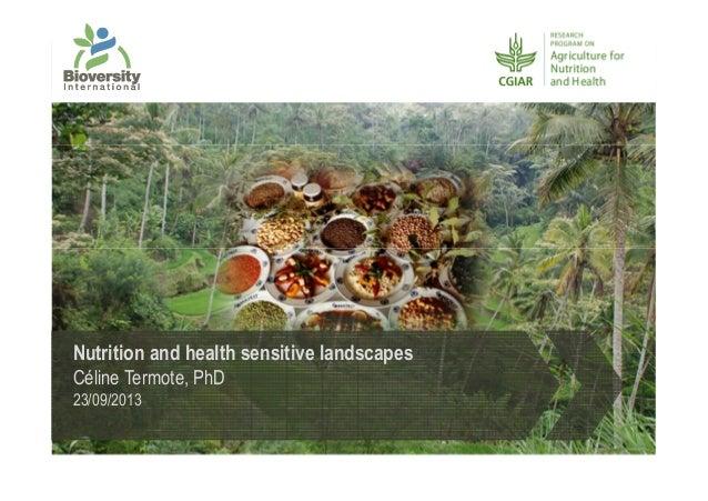 Nutrition and health sensitive landscapes Céline Termote, PhD 23/09/2013