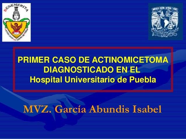 PRIMER CASO DE ACTINOMICETOMA DIAGNOSTICADO EN EL Hospital Universitario de Puebla MVZ. García Abundis Isabel