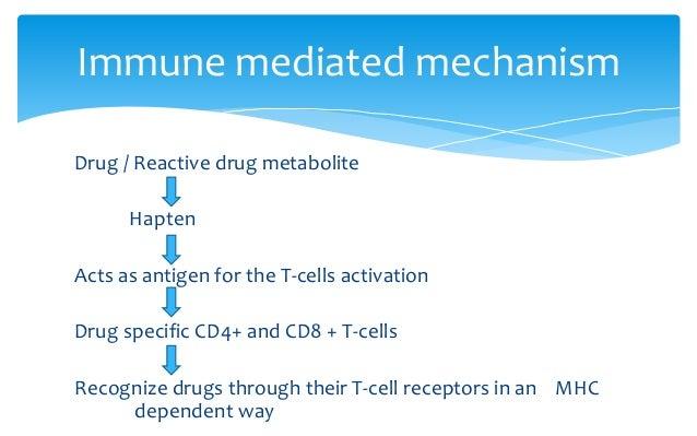 Drug / Reactive drug metabolite Hapten Acts as antigen for the T-cells activation Drug specific CD4+ and CD8 + T-cells Rec...