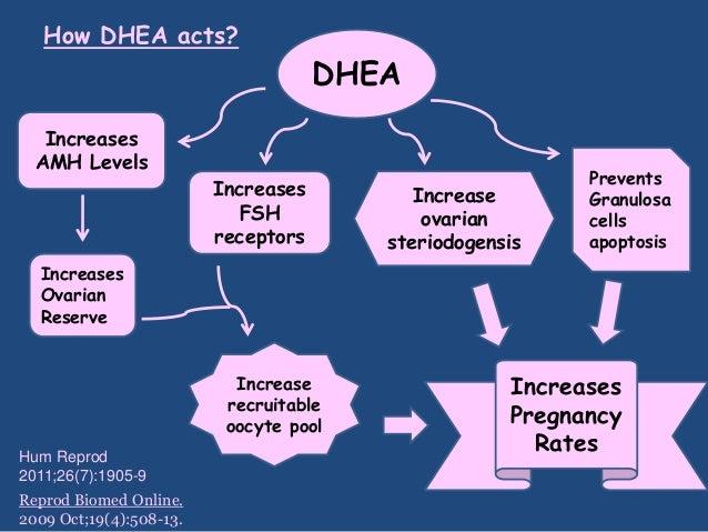 dexamethasone decilone forte adrenal corticosteroid