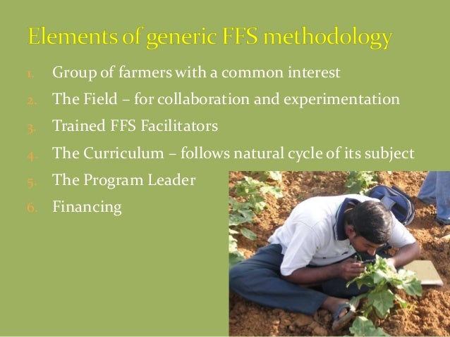 1. Group of farmers with a common interest 2. The Field – for collaboration and experimentation 3. Trained FFS Facilitator...