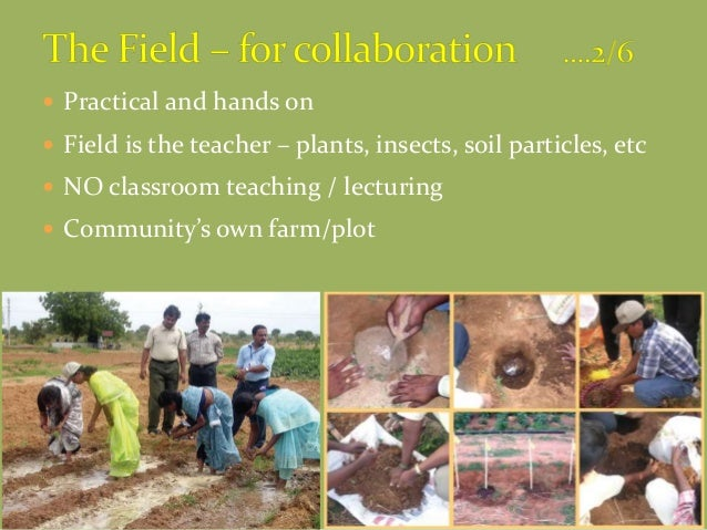  Practical and hands on  Field is the teacher – plants, insects, soil particles, etc  NO classroom teaching / lecturing...