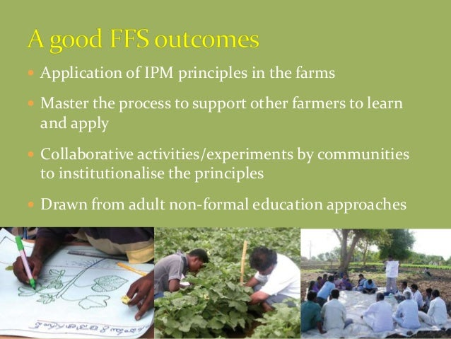  Application of IPM principles in the farms  Master the process to support other farmers to learn and apply  Collaborat...