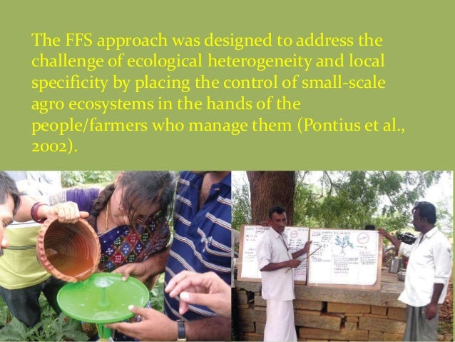 The FFS approach was designed to address the challenge of ecological heterogeneity and local specificity by placing the co...