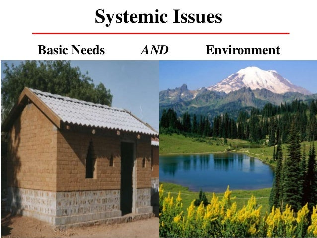 Systemic Issues Basic Needs AND Environment