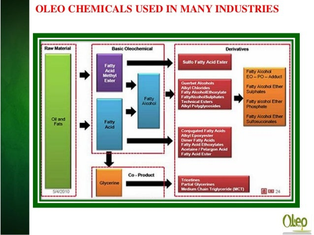 what is oleochemical