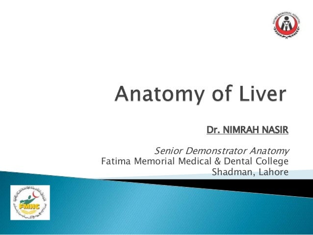 Anatomy of Liver Presentation
