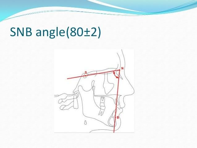 [Image: steiners-analysis-13-638.jpg?cb=1363355539]